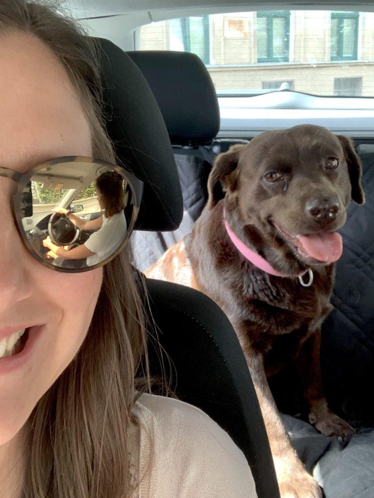 Office-Dog Luni und ich